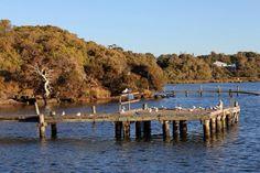 Blackwood River, Augusta, Australia  #makealivingliving #ysbh #travel #australia