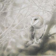 Paul Christiaan Bos voorstudie Owlery VIII - Coppernickle Bij Grijs Licht houtskool & krijt op Ingres papier