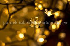 Bokeh with Lights - Fine Art Photography Gold Tones Bokeh Photography Romantic Modern Bedroom Decor Bathroom Decor