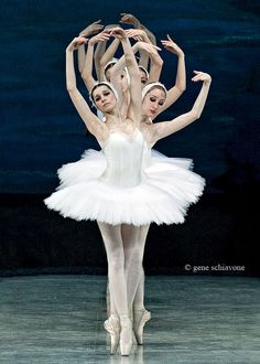 Gene Schiavone - National Ballet Ukraine, Swan Lake