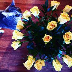 iTunes Podcast: Meghan Markle, Valentine's Day & Money