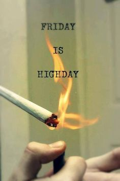 everyday is high day  #maryjane #peace #marijuana http://maryjane4200.blogspot.com http://maryjane4200.blogspot.com
