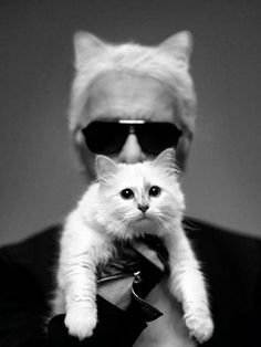 Karl Lagerfeld with his cat Choupette in Harpers Bazaar