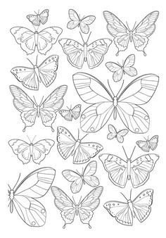 garden drawing Jardim Encantado - Antistress Coloring Book n .-- Enchanted Garden Antistress Coloring Book n color Colouring Pages, Adult Coloring Pages, Coloring Books, Butterfly Mandala, Butterfly Drawing, Butterfly Quilt, Butterfly Mobile, Butterfly Painting, Embroidery Patterns