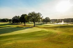 Mirimichi golf course. Photo cred: Jay Adkins