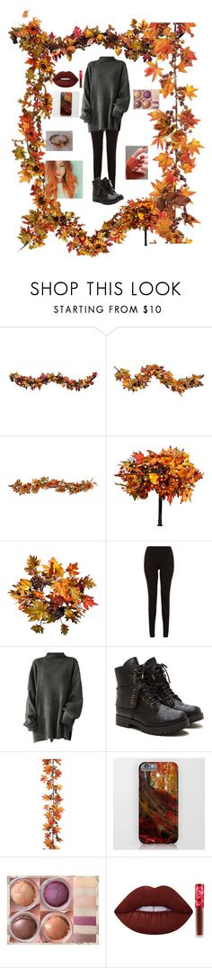 """Autumn"" by icyraindancer ❤ liked on Polyvore featuring Improvements, New Look, Allstate Floral, ASAP and Lime Crime"