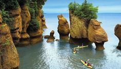 Amazing excursions with Carnival Cruise Lines