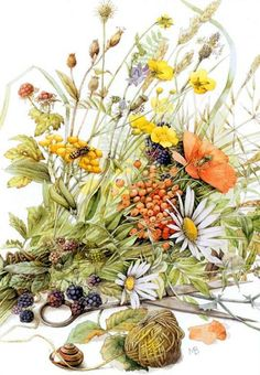 Wild flowers, Marjolein Bastin