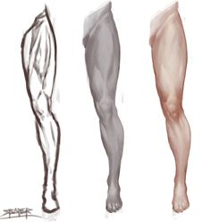 Drawing The Human Figure - Tips For Beginners - Drawing On Demand Anatomy Sketches, Anatomy Drawing, Anatomy Art, Human Anatomy, Drawing Legs, Human Drawing, Body Drawing, Drawing Process, Leg Reference
