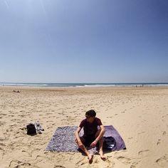 Lisboa Beach Shark