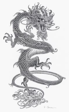 Crazy thin Chinese dragon tattoo with gray ink - tattoo ink . - Crazy thin Chinese dragon tattoo with gray ink – Tattooimages. Body Art Tattoos, Sleeve Tattoos, Tatoos, Ink Tattoos, Crazy Tattoos, Orca Tattoo, Lizard Tattoo, Japanese Dragon Tattoos, Chinese Tattoos