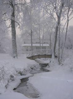 Lusting for a Winter Wonderland I Love Winter, Winter White, Winter Magic, Winter Scenery, All Nature, Snow Scenes, Foto Art, Winter Beauty, Winter Pictures