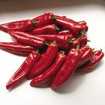 Planet Hybrid Pepper - A rare parthenocarpic pepper that sets fruit without pollination. Amazing yields over a long harvest period. Exceptionally sweet flavor