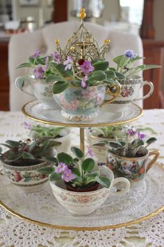 Rooted In Thyme: ~A Charming Arrangement With Teacups & African Violets~ - - Rooted In Thyme: ~A Charming Arrangement With Teacups & African Violets~ Gardening Verwurzelt in Thymian: ~ Ein charmantes Arrangement mit Teetassen und afrikanischen Veilchen ~ Decoration Shabby, Decoration Plante, Teacup Crafts, Violet Plant, Garden Projects, Garden Ideas, Garden Art, Container Gardening, Flower Pots