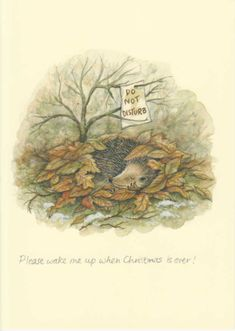 """""""Please wake me up when Christmas is over!"""" by Celia Bsicoe, published by Two Bad Mice, www.twobadmice.com"""