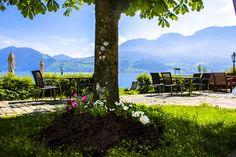 Vineyard, Mountains, Nature, Travel, Outdoor, Outdoors, Naturaleza, Viajes, Vine Yard