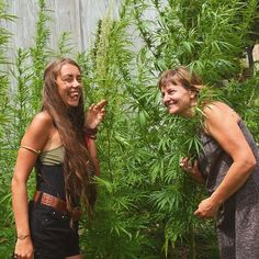 We need an industrial revolution that will work in harmony with Mother Nature.  Hemp is HOPE. A plant that has 50000 different uses from clothing fibre and fuel to shelter food medicine and beyond! Nestling into the crop at @moumoukaihemp farm with this ambitious empowered earthy woman... An inspiring friend on a mission to see a brighter sustainable future free of pesticides pollutants and materialism.. for our generation and generations to come. We share that dream.  #HempForVictory #Hemp…