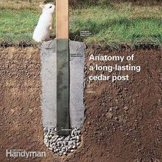 Did your fence posts rot at the bottom? Here's how to install new onesand avoid the problems that made your old posts rot. Did your fence posts rot at the bottom? Here's how to install new onesand avoid the problems that made your old posts rot. Backyard Fences, Backyard Projects, Outdoor Projects, Garden Projects, Backyard Landscaping, Patio Fence, Diy Fence, Wood Projects, Diy Backyard Fence