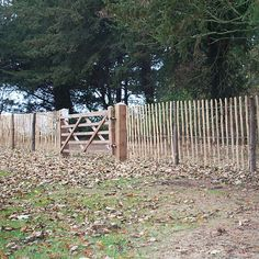 Easy cheap fencing to keep the rabbits out your flowers - chestnut pailing