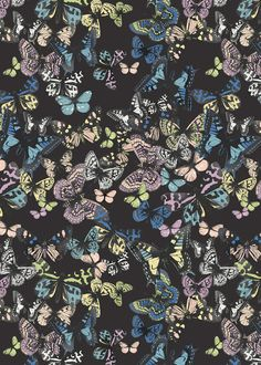 LOVE LABEL A/W 2014 SCATTERED BUTTERFLIES - marisahopkins.com