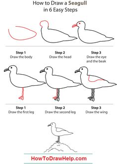 How to draw a seagull step by step - lots of drawing tutorials #bird www.HowToDrawHelp.com