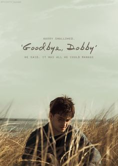 """""""Harry swallowed. 'Goodbye, Dobby' he said. It was all he could manage."""""""