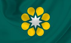 Golden Wattle Flag _ Preliminary idea 8 pointed white star © 2016 The Golden Wattle Flag Federation Of Australia, Honor System, Australian Defence Force, Screen Icon, Australian Flags, Aboriginal Artists, Alice Springs, National Symbols, Flag Design