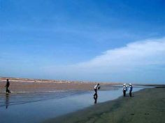 The Beach is located in Dong Minh Commune, Tien Hai District, 30km far from Thai Binh City along National Road 39B, and some 145km from Hanoi. The total area of this tourist spot is about ten thousand km2. The centre of this tourist spot is Dong Chau Beach with the length of 5 km, green pine forests and small clear beach.