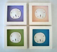 Beach Glass Boxes | Set /4 Shadow Boxes - Sand Dollar Nautical Beach