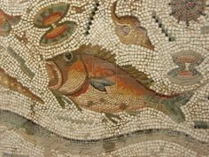 detail of a rich maritime mosaic from Bulla Regia, Tunisia by ~Uneaskan