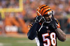 Cincinnati Bengals Finally Cut Ties With Rey Maualuga
