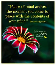 48 Best Peace Of Mind Images Messages Spirituality Inspiring Quotes