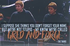 Harry Potter, Hexrpg, Quote, Weasley, Weasley Twins, Fred Weasley, George Weasley