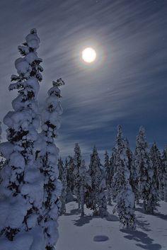 Ideas For Nature Forest Moonlight La Luna Winter Szenen, Winter Moon, Winter Night, Beautiful Moon, Beautiful World, All Nature, Snow Scenes, Winter Beauty, Winter Pictures