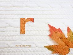 Lowercase letter r with glitter leaf and sweater knit. #fall #autumn #alphabet #typography #initial #monogram #font   maple leaf