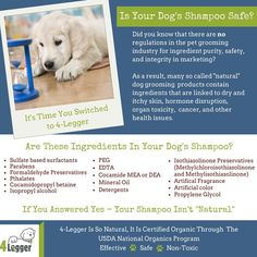 Unscented Hypoallergenic Certified Organic Dog Shampoo for Dogs and Ca - 4-Legger