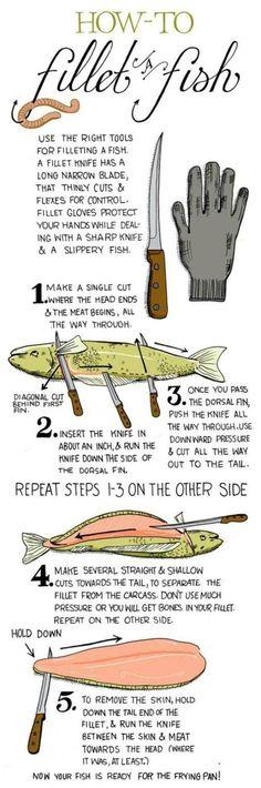 How to Fillet a Fish http://imgur.com/gallery/WbVnbsw?utm_content=buffera39ac&utm_medium=social&utm_source=pinterest.com&utm_campaign=buffer #Fishing #mendooutdoors