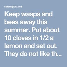 how to keep wasps out of umbrella