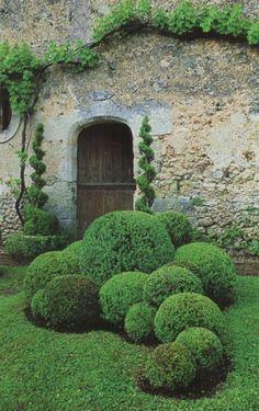 Garden gate ideas and inspiration: a boxwood garden with beautiful topiaries and balls. Garden gate ideas and inspiration: a boxwood garden with beautiful topiaries and balls. Formal Gardens, Small Gardens, Outdoor Gardens, Boxwood Garden, Topiary Garden, Topiaries, Boxwood Topiary, Topiary Plants, Brick Garden