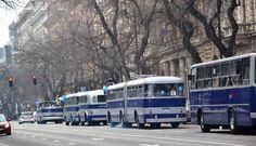 IHO - Közút - Centenáriumi buszünnep a Városligetben Budapest, Buses, Cars, Retro, Vehicles, Autos, Busses, Car, Car