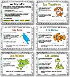 Learning Resources, Learning Spanish, Pattern Worksheet, Vertebrates, Science And Nature, Elementary Schools, Homeschool, Classroom, Journal