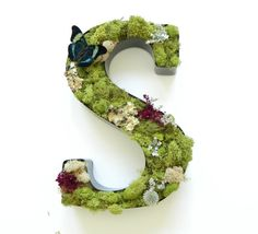 Mossy Letter, Indoor Garden, Plants, Dried Flower, Gardener and Naturalist, DIYer, Crafts, Living Wall Art on Etsy, £14.66