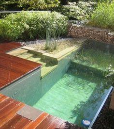 Photo : Composées généralement de trois zones distinctes, ces piscines biologiques ne nécéssite que très peu d'entretien grâce aux plantes qui filtrent l'eau