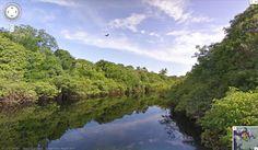 Visite o Amazonas com as incríveis imagens do Google Street View