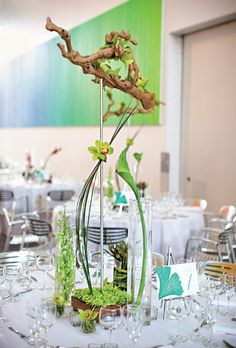 "Brides: Modern Branch and Orchid Centerpiece . The ""green"" tables were decorated with sculptural arrangements of grapewood branches, chrysanthemums, calla lilies, and orchids. During the reception, guests enjoyed a choice of roasted filet mignon, organic roasted chicken, or grilled artichoke tortellini. All catering was provided by Wolfgang Puck Catering."