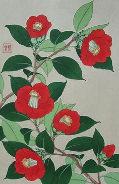 Tsubaki(Camellia)  by Kawarazaki Shodo (1889 -1973)