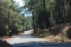 Fethiye, Kayakoy Road