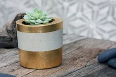 Square Gold Leaf Cement Planter by TheSwedishGypsy on Etsy
