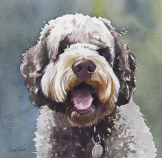 Cosgrove by Suzy @ Painted Pets