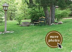good ($$) : Prairie Nursery - Your Source for Native Plants, Seeds, No Mow Lawn, Landscape Design & Consulting Also try: http://www.mountainvalleygrowers.com/zoneinformation.htm  http://www.mountainvalleygrowers.com/gardeningbyzone.htm    http://www.mountainvalleygrowers.com/herbgardenassort.htm  http://www.mountainvalleygrowers.com/lavangustifoilia.htm